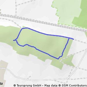 Kleine Waldrunde Kemnitz Krielow