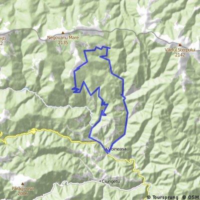 Munţii Lotrului : Voineasa - valea Voineşiţa - drumul de creastă pe sub Vf. Dobrun - Valea Lotrului - Voineasa