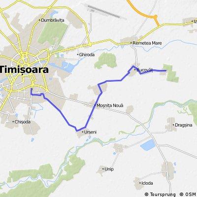 Timisoara - Bazos, pe drum mai putin circulat