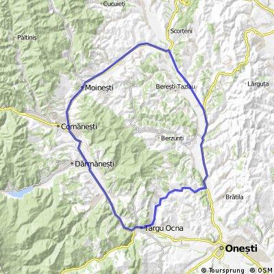 Tg.Ocna-Barsanesti-Ardeoani-Moinesti
