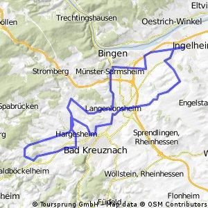 015a: Ingelheim - Mandel - Sponheim - Gensingen - Ingelheim