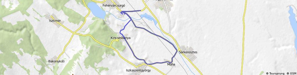 Fehérvárcsurgó-Kincsesbánya-Iszkaszentgyörgy-Moha-Igar 20km kör