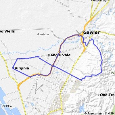 Gawler Wheelers-ROUTE82C-Gawler-Uleybury-Craigmore-Virginia-SOB-Gawler-BEGINNER HILLS