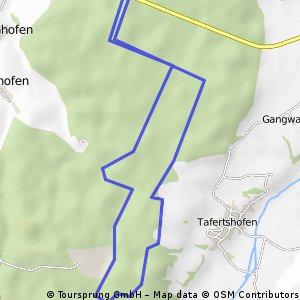 Hausrunde 10 km Lauf