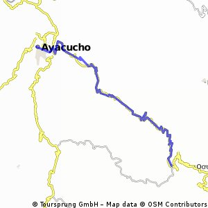 AN036 - Ayacucho - Bushcamp