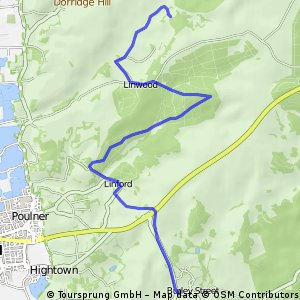 Burley to Linwood - New forest cycle route