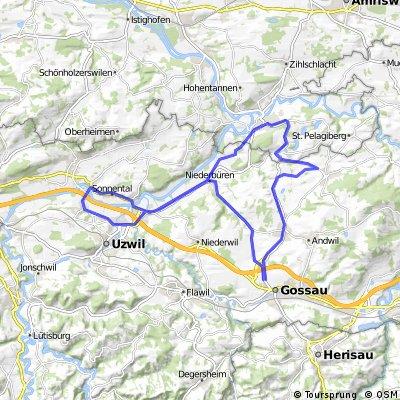 Niederbüren, Oberbüren, Henau, Niederbüren, Bischofszell, Hauptwil