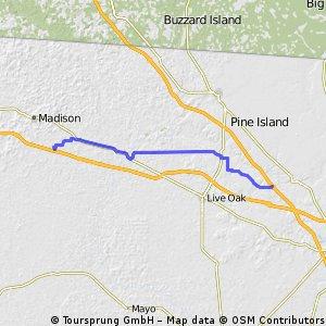 TAO15: Near White Spgs to near Madison, FL