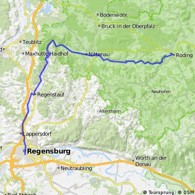 201408-03 Regentalradweg  Roding - Regensburg