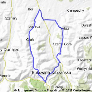 Carna gora - gron