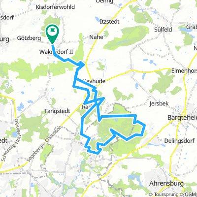 RSC-Kattenberg - CTF 2019 - 47 km