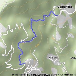 colognora -gello