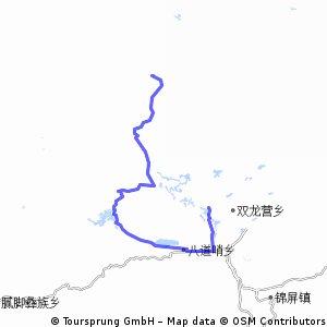 China Tag 4