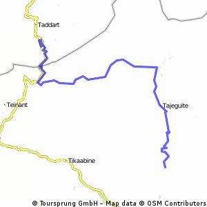 Maroc-Ziua 4- Padure Pini inainte urcare Tizi'n Tichka- livada maslini