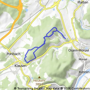 20150113 Rundwanderung Osann - Klausen im Wittlicher Wald