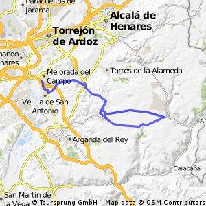 Mejorada del Campo (81km)