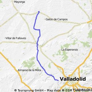 3ª Etapa Camino Santiago - Cigunuela a Villalón de Campos