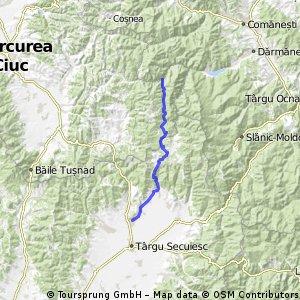 prop sanzieni - estelnic - carpinenii - valea uzului