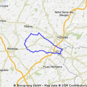 St laurent,La Verrie,Boussay,La Romagne