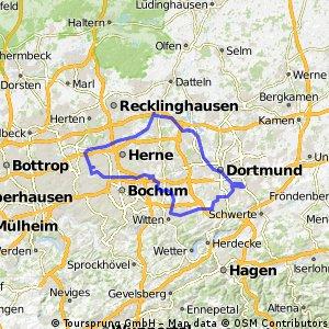 Rheinischer Esel