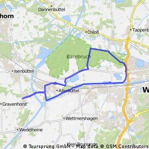 Wasbüttel - NSG Düpenwiesen - Wasbüttel 30.04.2013