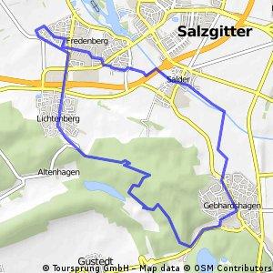 5 Ortsteile von Salzgitter