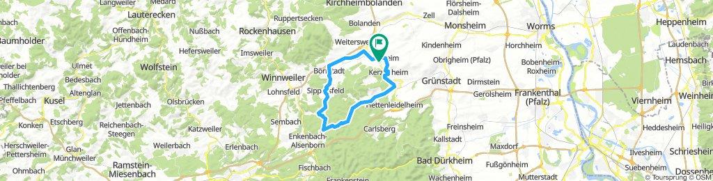 Tour 1 - 41km - RTF+ Zwischen Wald und Reben