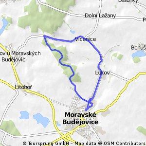 Moravské Budějovice - Lukov - Vícenice - Hora - Moravské Budějovice