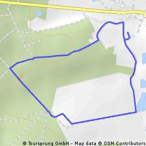 Syrauer/ Kauschwitzer Heide