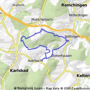 Kutsche via Kronenwett, Mutschelbach und Noettingen zurueck