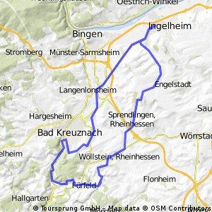 RR 23.08.2009 Variante v. BSG 30a Ingelheim - Bad-Münster a. S. - Brücklocherhof - Steigerhof - Sprendlingen - Ingelheim