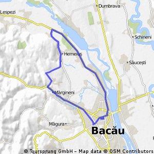BACAU-LILIECI-HEMEIUSI-FANTANELE-TREBES-BACAU