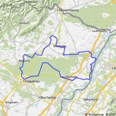 C8 De la Forêt au Rhin.