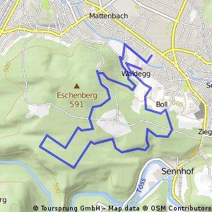 Laufsporttag Winterthur