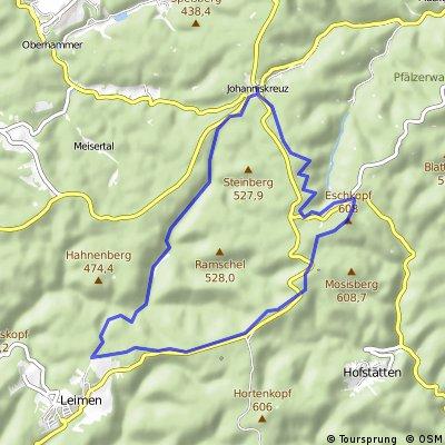 MTBPark Pfälzerwald: Tour 1 Johanniskreuz-Leimen Runde