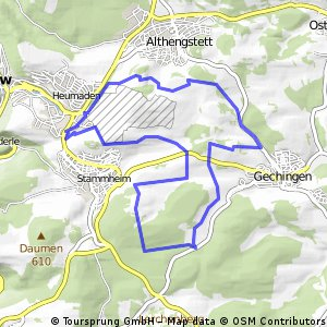 Aufwärmrunde Calw- Gechingen