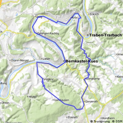 Berg- und Talfahrt Mosel/Hunsrück