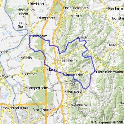 Gernsheim - Odenwald - Tour
