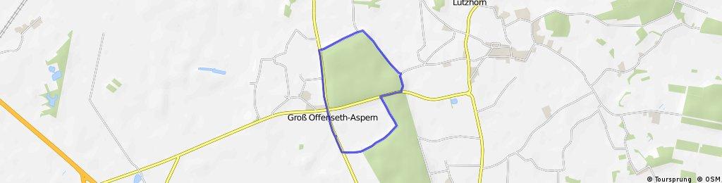 Gr. Offenseth - Lutzhorn Wald