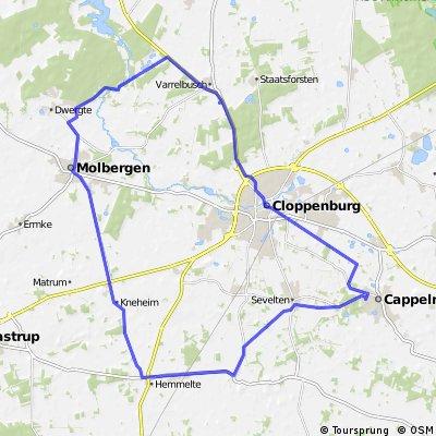 Cappeln-Hemmelte-Molbergen-Staatsforsten