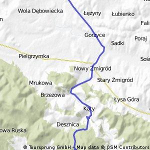 4/4 Pielgrzymka Rzeszów-Dębowiec v.Szosowa