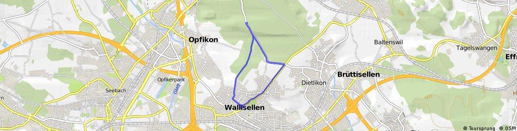 Tri Wallisellen