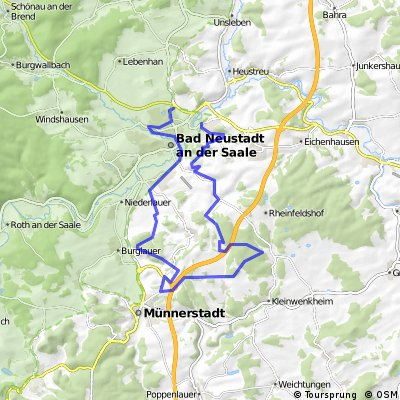 Buschwindröschen bei Schlegelwarte und Maria Bildhausen