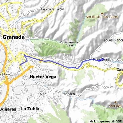 Ruta Granada-Lancha de cenes, Pinos