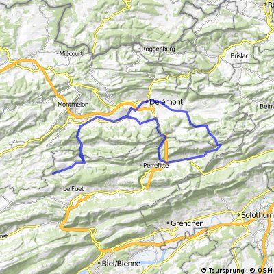 Delemont-Vermes-Moutier-Bassecourt-Bellelay-Delemont