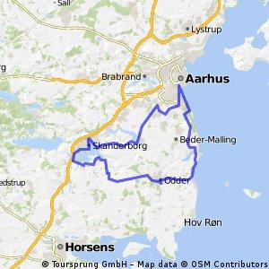 IM 70.3 Aarhus Original Bikepart