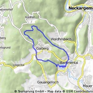 Trainingsstrecke 1 MTB (12 km)