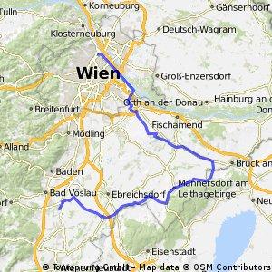 AUVA - Schönau über Bruck/Leitha