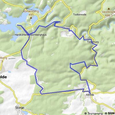 E-Bike Harz: Bodetal Köhlertour Allrode-Altenbrak-Treseburg