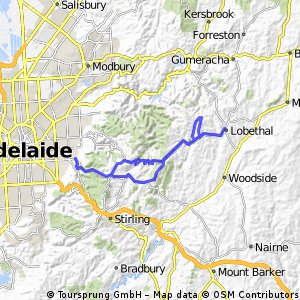 Adelaide Hills tour of orchards & vines